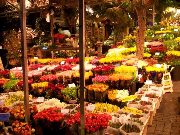 Mercado de las flores Bloemenmarkt Ámsterdam