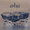 A-ha: Under the makeup