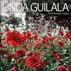 Linda Guilala: Primavera negra - portada reducida