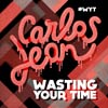 Wasting your time - portada reducida