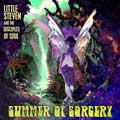 Little Steven: Summer of sorcery - portada reducida