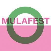Nuevos nombres para el Mulafest 2015
