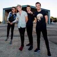 Anunciado el t�tulo del quinto �lbum de One Direction