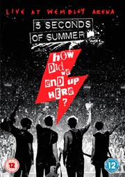 5 seconds of summer, How did we end up here?