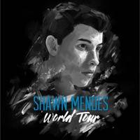 Concierto de Shawn Mendes en Madrid