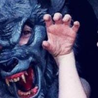 The temper trap y Tom Odell, en las novedades de la semana